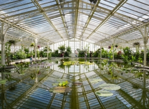 The botanical garden in munich is a very popular place for those interested in plants