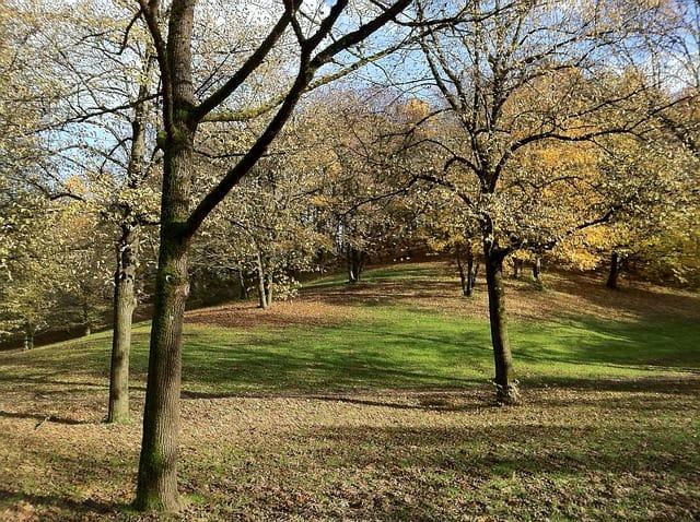 Westpark in autumn in Munich on a Sunday