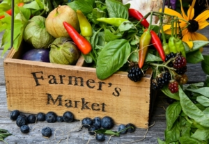 The original farmers' markets in Munich can now be visited every day.